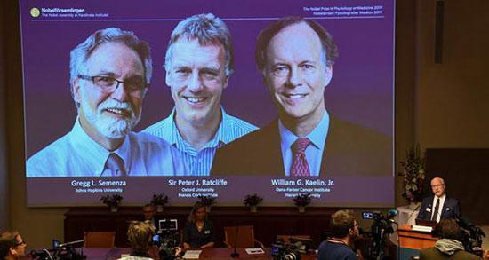 برندگان جایزه نوبل پزشکی 2019 را بشناسید