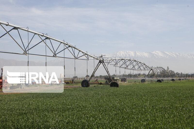 خبرنگاران بیش از 1300 هکتار مزرعه در جنوب کرمان به سامانه آبیاری نوین مجهز شد